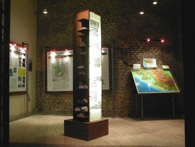Museo_Geopaleontologico_Rocca_di_Cave_sala